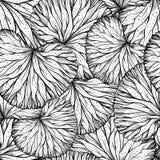 kwiecisty deseniowy bezszwowy wektor ilustracja wektor