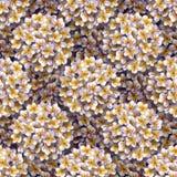 kwiecisty deseniowy tropikalny Akwarela rysuje małego kwiatu plumeria Białego egzotycznego kwiatu frangipani wielostrzałowy tło zdjęcie royalty free