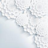 Kwiecisty elegancki szary tło z 3d kwiatami Zdjęcie Stock