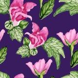 Kwiecisty fiołka wzór royalty ilustracja