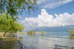 Kwiecisty jezioro Obraz Royalty Free