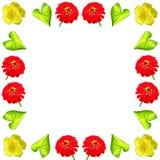 Kwiecisty kolorowy deseniowy tło set Obraz Royalty Free