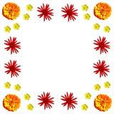 Kwiecisty kolorowy deseniowy tło set Zdjęcie Stock