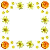 Kwiecisty kolorowy deseniowy tło set Fotografia Royalty Free