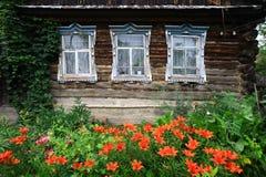 kwiecisty ogród Fotografia Stock