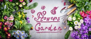 Kwiecisty ogrodnictwa tło z rozmaitością kolorowy ogród kwitnie i narzędzia, ręcznie pisany tekstów kwiatów ogród na betonowym ba Obraz Royalty Free