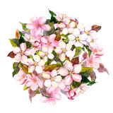 Kwiecisty okrąg, menchia kwitnie - jabłka, wiśnia, Sakura okwitnięcie akwarela royalty ilustracja