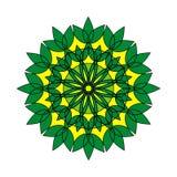 kwiecisty ornamental kwiecisty wzór kolorowy ornament Zdjęcie Stock