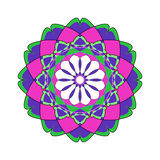 kwiecisty ornamental kwiecisty wzór kolorowy ornament Obraz Stock