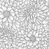 Kwiecisty płytka wzór kwiat światła playnig tło Ogrodowa tekstura Obrazy Stock