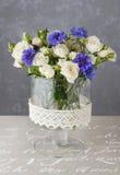 Kwiecisty przygotowania z błękitnymi cornflowers i białymi różami Obrazy Royalty Free