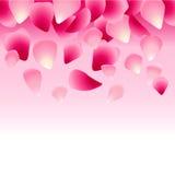 Kwiecisty różowy tło dekorujący z różanymi płatkami Zdjęcie Stock