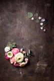 kwiecisty ramowy round Fotografia Stock