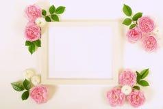 Kwiecisty ramowy wianek jasnoróżowi róża kwiatu pączki i liście Obrazy Stock