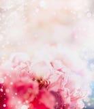Kwiecisty romantyczny abstrakcjonistyczny pastel granicy tło z czerwonymi kwiatami Zdjęcia Stock