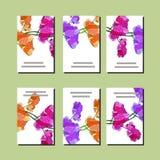 Kwiecisty set szablony dla twój projekta, kartki z pozdrowieniami, świąteczni zawiadomienia, plakaty ilustracja wektor