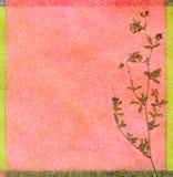 kwiecisty tło kolor ilustracja wektor