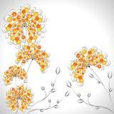 Kwiecisty tło, - pomarańcze, okrąg Fotografia Stock