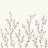 Kwiecisty tło. Projektów elementy Obraz Royalty Free