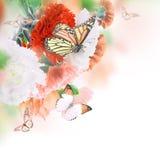 Kwiecisty tło róże Obraz Stock
