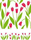 kwiecisty tło tulipan ilustracja wektor