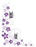 Kwiecisty tendril, kwiaty, purpury Zdjęcia Stock