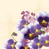 Kwiecisty wektorowy tło z violents kwiatami Obrazy Royalty Free