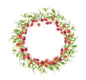 Kwiecisty wianek - jagody, trawa Akwareli round granica zdjęcia stock