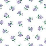 Kwiecisty wzór z purpurowymi różami Obrazy Royalty Free