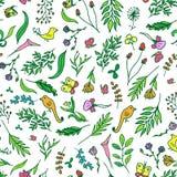 Kwiecisty żywy bezszwowy wzór z kolorowymi kwiatami tropikalnymi, motyli, ptaki wektorowi Zdjęcie Royalty Free