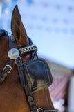 Kwietnia jarmark Utrera w Seville koniach i dekoraci Fotografia Stock