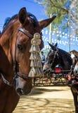 Kwietnia jarmark Utrera w Seville koniach i dekoraci Zdjęcia Royalty Free