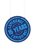 Kwinta rok doświadczenia nastoletni znaczek ilustracja wektor