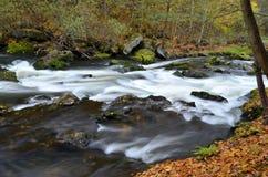 Kwisa. The photo shows a waterfall river Kwisa Royalty Free Stock Images