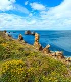 Kwitnąć Atlantycką ocean linię brzegową Fotografia Royalty Free