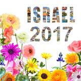 Kwitnąć Izrael nowego roku Fotografia Stock