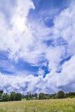Kwitnąca łąka pod dramatycznym niebem w Eifel Obraz Royalty Free