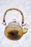 kwitnąca herbata zdjęcia royalty free