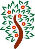 Kwitnący drzewo ilustracji