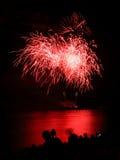 Kwitnący fajerwerk międzynarodowy fajerwerku festiwal Zdjęcia Stock