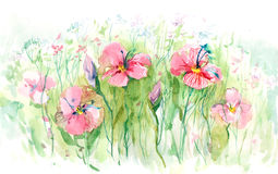 kwitnący gazon ilustracji