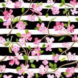 Kwitnący wiosna kwiatów wzoru tło Bezszwowy moda druk ilustracji