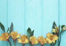 Kwitnie alstroemeria kwitnącą świeżość na koloru drewnianym tle, rama obraz royalty free