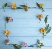 Kwitnie alstroemeria kwitnącego piękna romansowy dekoracyjnego na koloru drewnianym tle, rama Fotografia Stock