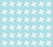 kwitnie bezszwową teksturę Zdjęcia Stock