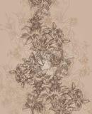 kwitnie bezszwową teksturę Obrazy Royalty Free