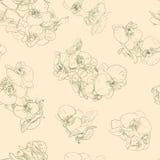 Kwitnie bezszwowe deseniowe tło kreskowej ilustraci orchidee elementy kwieciści projektów Zdjęcia Stock