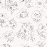 Kwitnie bezszwowe deseniowe tło kreskowej ilustraci orchidee elementy kwieciści projektów Obrazy Stock
