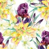 Kwitnie bezszwowego wzór z irysami, tulipanami, daffodils i liśćmi akwareli, ilustracja wektor