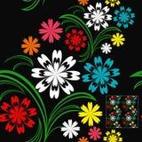 Kwitnie bezszwowego wzór z kolorowymi kwiatami na a Zdjęcia Royalty Free